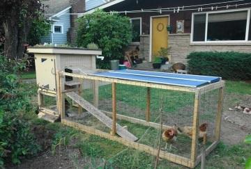 chicken coop kits