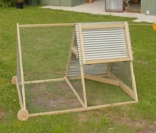 Chicken Tractor (photo courtesy of The City Chicken)