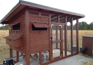 How to Build a Chicken Coop - Essential Tips to Help You